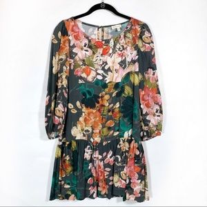Anthro Meadow Rue Minutiae Drop waist floral dress